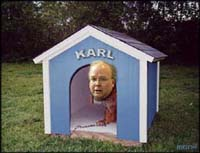 A picture named karl_doghouse.0.jpg