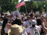 #FamiliesBelongTogether Protests Across The Country Today