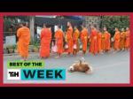 Viral Videos Of The Week