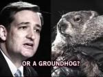 Bill Maher: Republicans Release Attack Ad Against Punxsutawney Phil