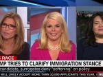 Betsy McCaughey's Terrible, Horrible CNN Appearance  Defending Trump's Immigration Policy