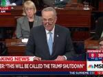 Sen. Schumer: I Offered Trump 'The Border Wall' And He Turned Me Down