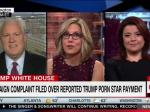 Matt Schlapp Won't Answer Questions About Trump's 'Alleged' Affair With Stormy Daniels