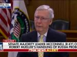 Talking Turtle Won't Allow Vote On Senate Bill To Protect Bob Mueller