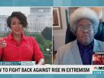 Elie Mystal Finds The Bright Spot In Right-Wing Extremism: 'THEY'RE COWARDS'