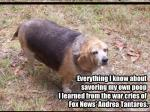 Open Thread - Here's Fat Beagle With Today's Headlines!