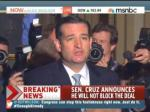 Cruz: It Was A 'Remarkable Victory' Until Senate Republicans Caved On The Shutdown