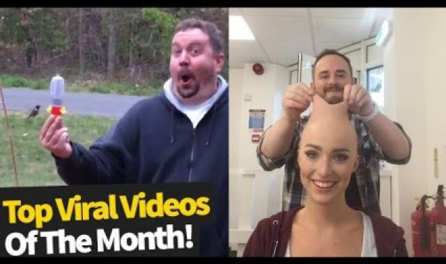 Viral Videos Of The Month