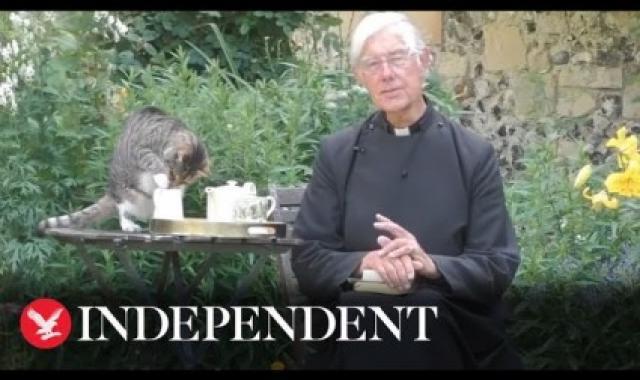 Dean Of Canterbury's Cat Interrupts Online Prayer Service