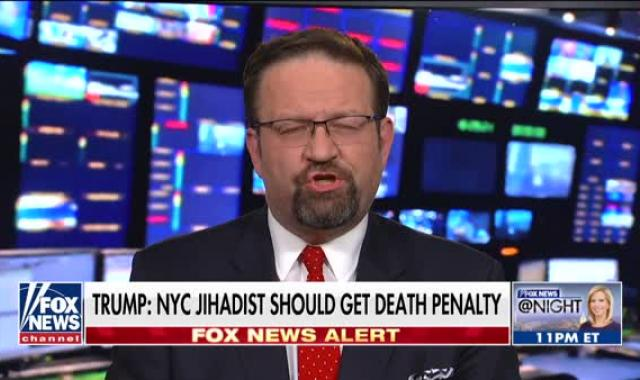 Sebastian Gorka Does Not Deny Being A Nazi