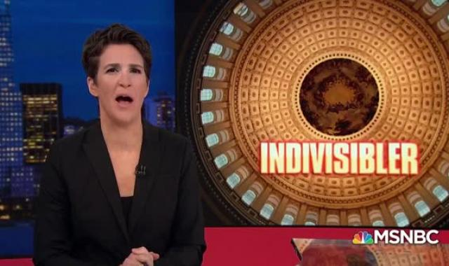 Progressives Go On Offense With  'Indivisible 2.0'