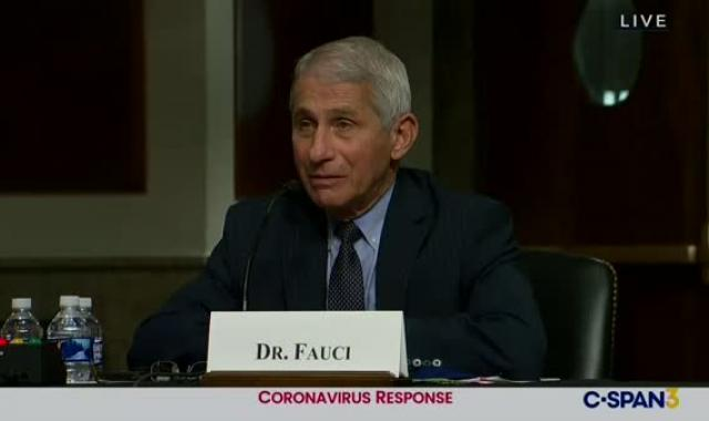 BOOM:  Dr. Fauci Slaps Down Rand Paul By Name At Hearing
