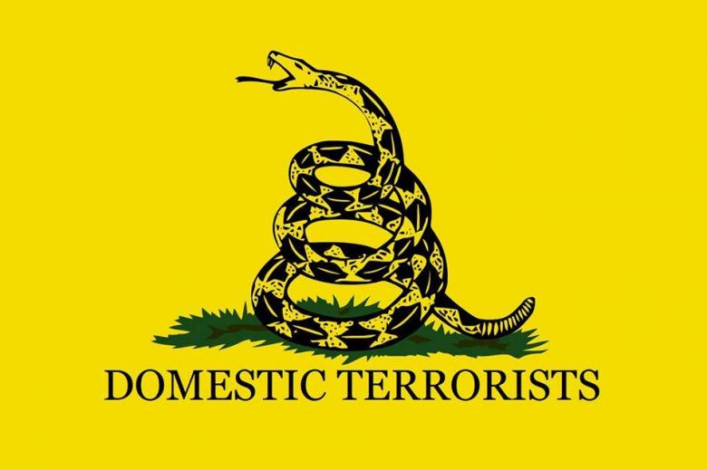 Wingnut Pro-Gun Extremists: Don't Vote; Assassinate The President Instead!