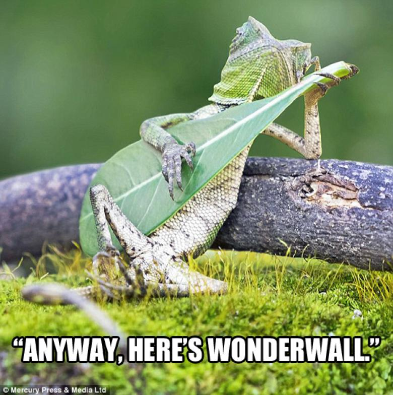 Open Thread - Please, No Stairway To Heaven