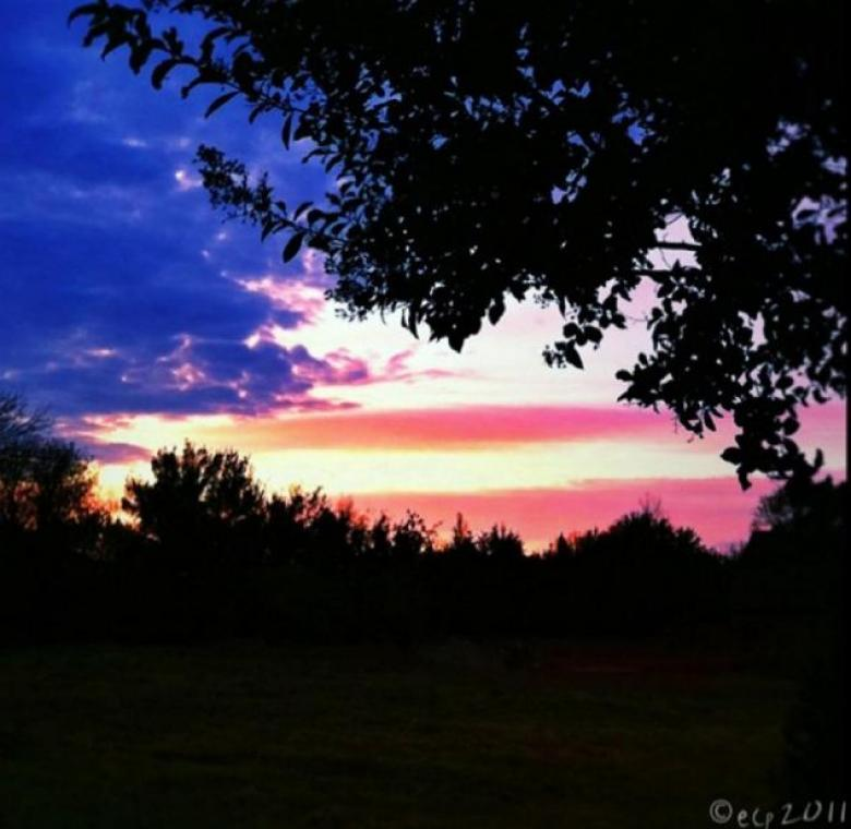 Open Thread - Flag In The Night Sky