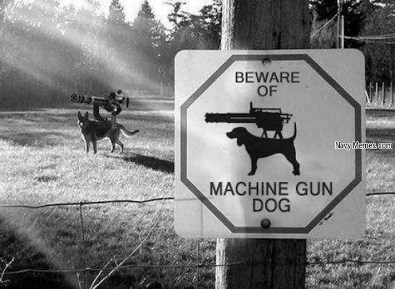 Fun With Guns: If You Live In FL, Have A Gun And A Dog, You Are Screwed Because That Dog Is Gonna Shoot You Edition