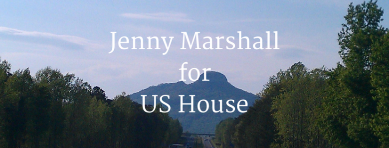 Remember Virginia Foxx? Meet Jenny Marshall, Her Progressive Challenger