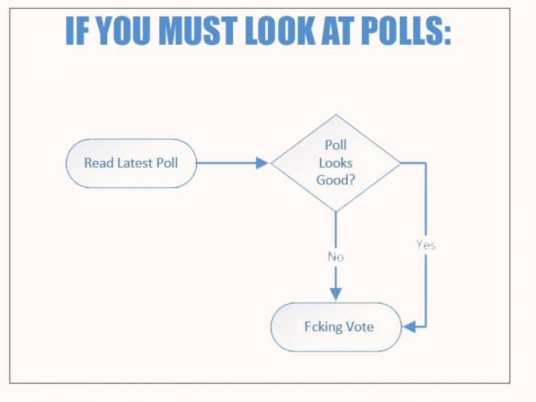 Open Thread - Your 'What About The Polls' Flow Chart!