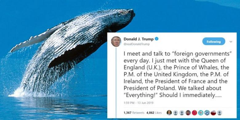 Trump Ridiculed For His 'Prince Of Whales' Tweet