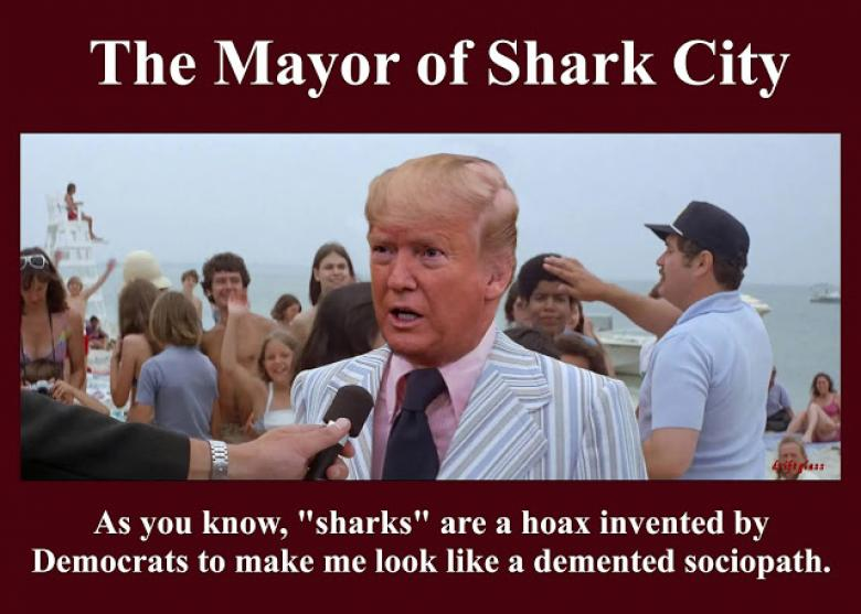 The Re-Nomination Of The Mayor Of Shark City