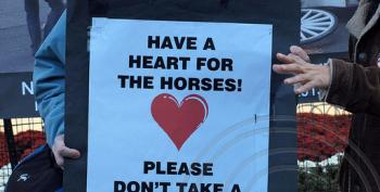 NYC Mayor Wants To Ban Horse-Drawn Carriages