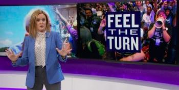 Samantha Bee Pops The 'Democratic Party's Tension Pimple'