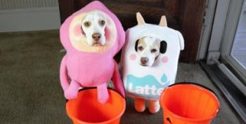 Open Thread - Trick Or Treat Dogs Get All The Good Treats