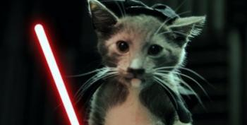 Open Thread:  Jedi Kittens Strike Back!
