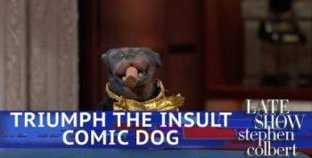 Triumph The Insult Comic Dog Reviews The Midterms