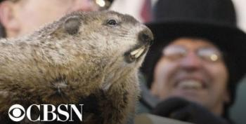 In Case You Missed It:  The Punxsutawney Phil Livestream