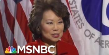 House Oversight Is Investigating 'Mrs. Mitch' Chao For Conflicts Of Interest
