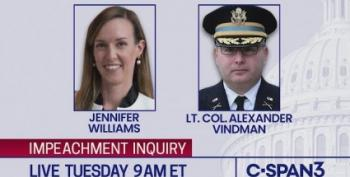 Alexander Vindman And Jennifer Williams Testify In Impeachment Inquiry