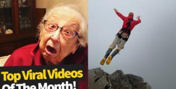 Viral Videos Of The Week:  'Pretty Bird!'