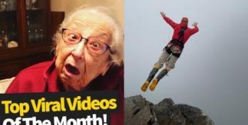 Viral Videos Of The Week:  'Pretty Bird!'
