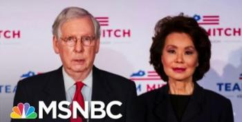 Maddow: Even A Second Grader Knows Elaine Chao Is Corrupt