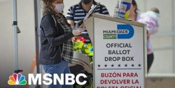 Maddow: FL GOP May Have Cut Ballot Access To Their Own Voters
