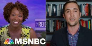Joy Reid Merrily Swats Down Critical Race Theory Shill