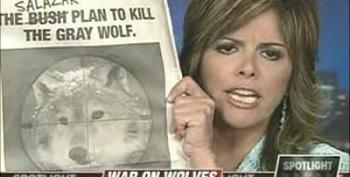 Is The White House Waging War On Wolves?