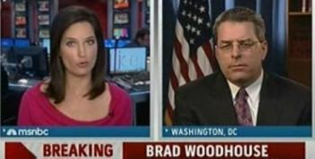 DNC's Woodhouse: Republicans Are Sitting In A Glass House Throwing Stones