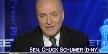 Schumer: Vote For Reform Will Be 'Asset' In November Elections