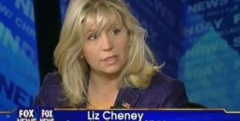 "Liz Cheney Not Sure If Obama Is ""All In"" On The War In Afghanistan"