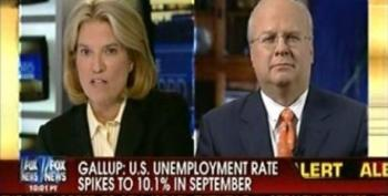 Greta Van Susteren Thinks Karl Rove Is Qualified To Weigh In On Job Creation