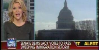 Megyn Kelly, Shannon Bream Characterize DREAM Act As 'Amnesty'