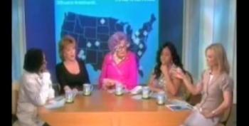 Elizabeth Hasselbeck: Sarah Palin's Crosshairs Ad 'Despicable'