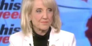 Jan Brewer: Government Is A 'Necessary Evil'