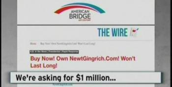 Democratic PAC Takes Credit For NewtGingrich.com Prank