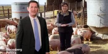 Mark Halperin Critiques Joni Ernst's Latest Ad With Hogs