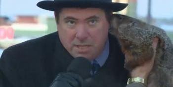 Jimmy The Groundhog Gets Mean