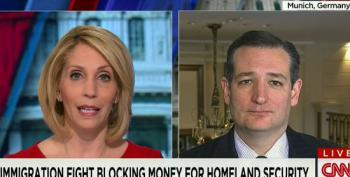 Ted Cruz Calls Democrats Irresponsible For Filibustering Homeland Security Funding