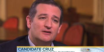 Ted Cruz: 'You Can't Run A Grassroots Campaign If You're An Arrogant Little Snob'